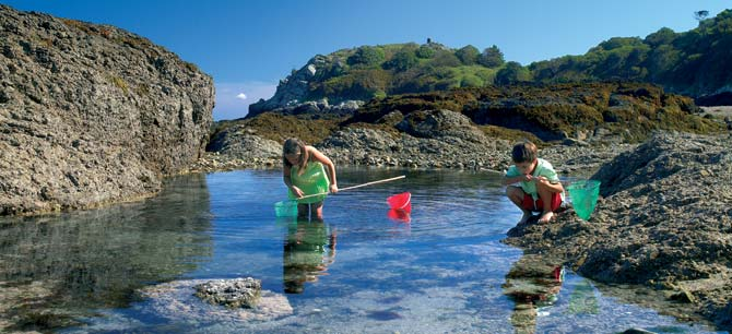 Rock Pool Children