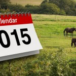 2015 Holidays at Dune Cottage Holidays